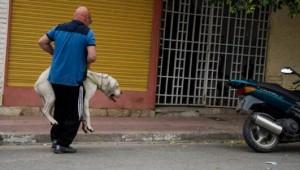 maltratador-perro-Córdoba