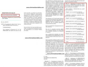 Decision-Administrativa-300-2015-(09062015)