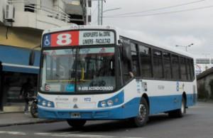 colectivo-línea-8