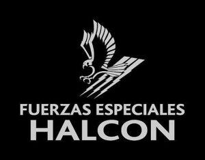 fuerza-especial-halcon